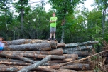 Jake can't wait to start chopping all this firewood.