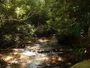 creek-2003