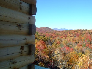 Fall from the deck
