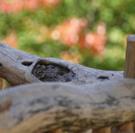 railing-_0001_locust-railing